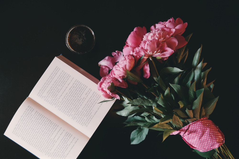 hannah-books